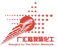 新疆广汇陆友硫化工有限公司